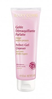 Perfect Gel Cleanser